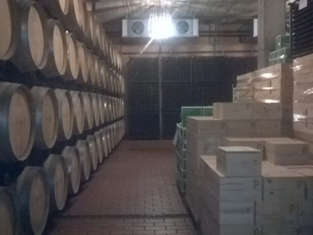 Wino najstarsze jakie przetrwało.