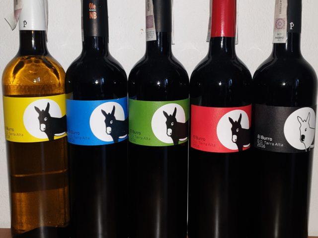Jak kupić dobre wino? Dobre i smaczne